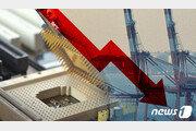 "OECD, 올해 한국 경제성장률 2.6→2.4%로 낮춰…""노동생산성 향상 과제"""