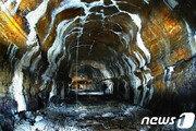 미생물에 박쥐까지…제주 용암동굴 보존 연구 본격화