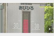 日, 5월 폭염 강타…홋카이도 오비히로 38.3도 신기록