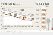 쌀 소비 10년간 연 1.9%씩 '감소'…소비변화 대응책 추진 시급
