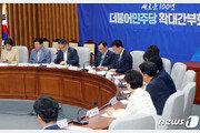 민주당, '손혜원 지역구'에 마포을 정청래…지역위원장 12명 임명