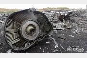 298명 전원 사망의 MH17 격추, 전러시아 대령 등 정식 기소