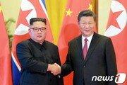 """시진핑 방북 날 분위기 띄우는 北…""""열렬히 환영"""""""