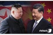 北 국빈방문 시진핑 주석, '조중우의탑' 찾는 속내는?