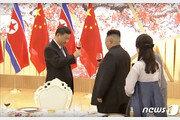 """시진핑 """"한반도 문제 '정치적 해결' 대세…北과 협력"""""""