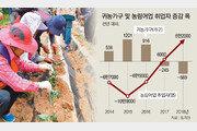 귀농 증가로 농어업 취업 늘었다더니… 지난해 귀농 가구 -인원 되레 줄었다