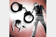 가정폭력과 처벌[횡설수설/이진구]