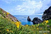 가고싶은 섬 신안 홍도서 18~21일 '섬 원추리 축제'