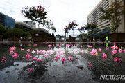 [날씨]일요일도 전국 흐리고 비…경상·전라동부 최대 100㎜
