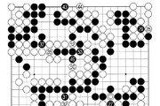 [바둑]보소프트컵 세계인공지능바둑대회… 패는 백이 이겼으나
