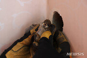 인천서 에어콘 벽 틈새에 갇힌 아기 새 2마리 구조