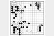 [바둑]보소프트컵 세계인공지능바둑대회… 아픈 선수 한 방