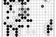 [바둑]보소프트컵 세계인공지능바둑대회… 짐작 못한 수