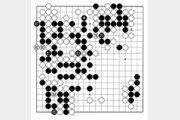 [바둑]보소프트컵 세계인공지능바둑대회… 인공지능의 버그