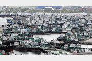 태풍 크로사, 日히로시마서 북상…16일 새벽 독도 근접