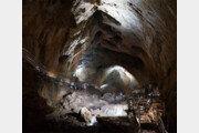 시원한 동굴 탐험, 상쾌한 해안 유람… 골라 즐기는 삼척 여행