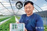 데이터 활용해 재배환경 원격제어… 생산 딸기 90%가 '최상품'