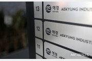 '가습기살균제 증거인멸' 애경산업 전 대표, 1심 실형