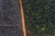 브라질 대통령, 아마존 열대우림 바깥지역에 방화 허용 대통령령 발표