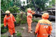 태풍 '링링'에 쓰러진 나무 제거중 추락 소방관, 끝내 숨져
