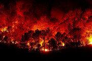 인도네시아 곳곳 방화로 인한 산불 반복적 발생…용의자 185명 체포