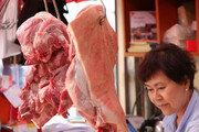 돼지열병 파동에 서울교육청도 돼지→소·닭 대체급식 안내 공문