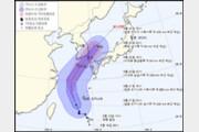 17호 태풍 '타파' 전국 강한 비바람...제주공항, 일부 운항 차질