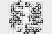 [바둑]보소프트컵 세계인공지능바둑대회… 탄탄한 기량