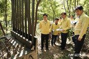 'DMZ 이남' 살아있던 멧돼지서 돼지열병 첫 검출…접경 전지역 확산 우려