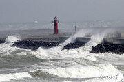 일본 강타한 태풍 '하기비스' 소멸…온대저기압 변질