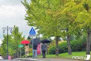 [날씨] 전국 적시는 가을비…일교차 10도 안팎 '건강조심'