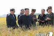 """北김정은, 온실농장·양묘장 현지지도…""""농사도 과학적으로"""""""