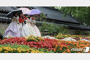 [날씨]19일 전국 포근하고 큰 일교차…영동·남부 '가을비'