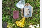 '군수 뇌물' 땅에 묻어 보관한 보성군 공무원 강등 정당