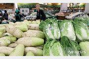 평년가격의 144% 급등 '金배추'…포장김치업계도 '비상'
