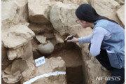 백제 최전성기 왕족 화장유골 첫발굴…근초고왕 흔적찾기 희망?