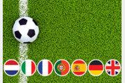 [책의 향기]'축알못'을 위한 유럽축구 역사서