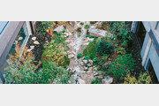장식이 아닌 생명의 공간… 도심 정원의 대반전