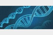 탈모 예측하고… 궁합 확인하고… 유전자 검사의 진화