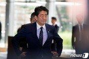 아베 총리 태우고 태국 향하던 日정부 전용기서 작은 불 '소동'