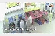 고양이 건조기에 넣어 죽인 말레이 남성, 징역 34개월형