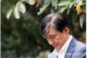"""""""정경심, 조국 수석때 4차례 테마주 차명매입"""""""