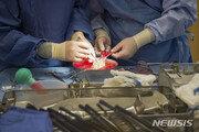 동의 없이 환자 자궁 절제한 美의사…직원 제보로 체포
