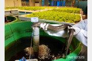 수과원, 물고기·채소 함께 기르는 친환경 양식기술 개발