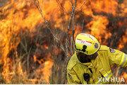 호주 산불, 시드니도 위협… 14개 지역 '비상사태'