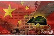 중국 돼지열병에 이어 흑사병까지 '설상가상'