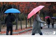서울 가을 비 속에 진눈깨비, 올 첫눈…작년보다 9일 일러