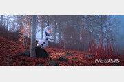 '겨울왕국 2', 쿠키 영상 1개…귀여운 올라프 나와