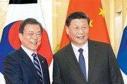 文대통령-시진핑, 대북제재 완화 논의