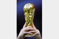 월드컵 꼭대기에 숨은 보물 '₩40,600,000,000'